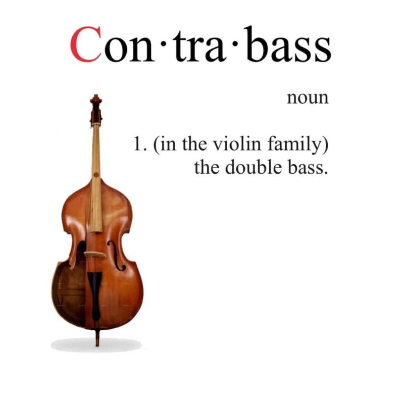dictionary-contrabass